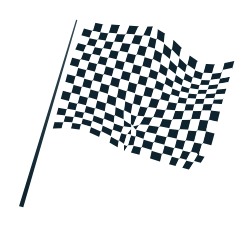 chequered flag icon
